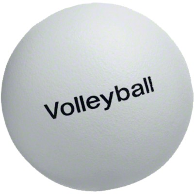 Volley® Volleyball, 220 g