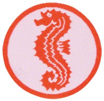 Frühschwimmerabzeichen Seepferdchen